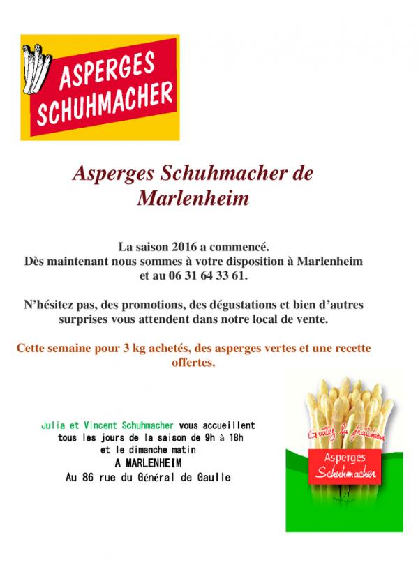16 04 15 asperges d alsace schuhmacher marlenheim