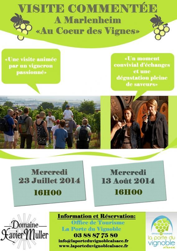 Visites du Vignoble à Marlenheim