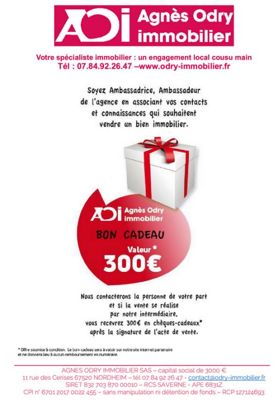 2021 05 20 agnes odry immobilier a nordheim