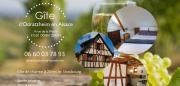 Gite à Odratzheim Alsace