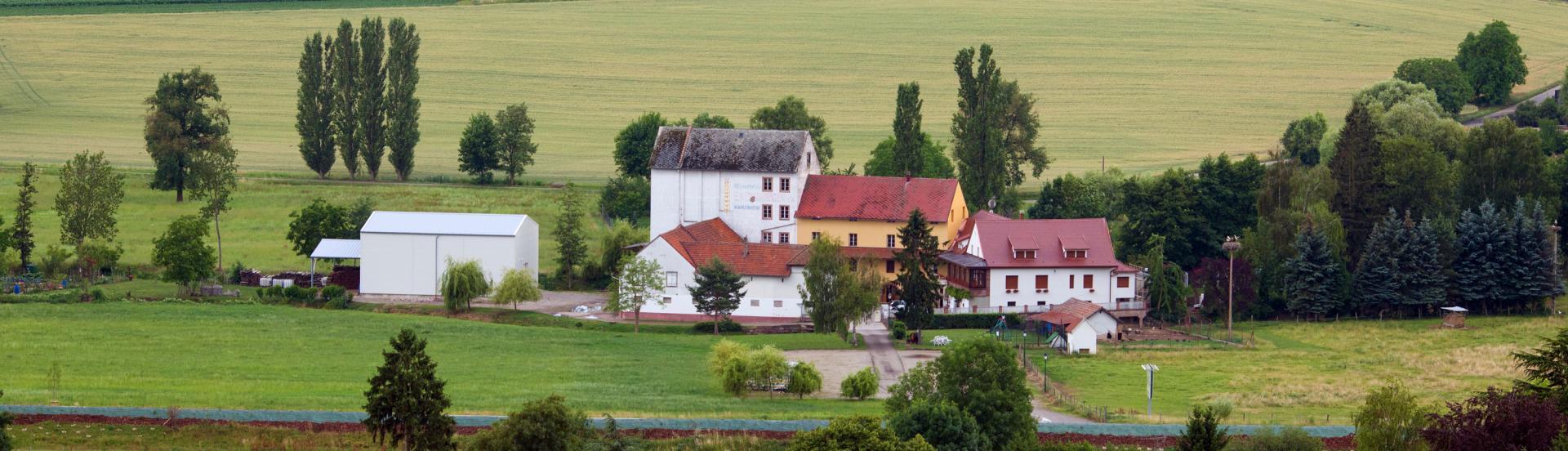 Domaine Xavier Muller à Marlenheim