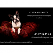 Aline-Caid-Photos